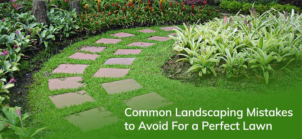 Common Landscaping Mistakes to Avoid For a Perfect Lawn