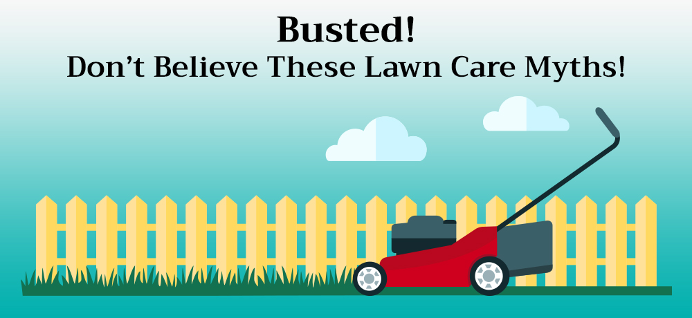 Busted! Don't Believe These Lawn Care Myths!