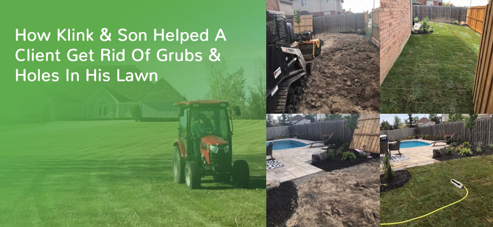 How Klink & Son Helped A Client Get Rid Of Grubs & Holes In His Lawn