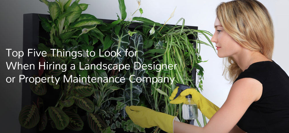 Top Five Things to Look for When Hiring a Landscape Designer or Property Maintenance Company