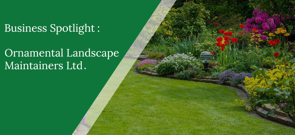 Business Spotlight - Ornamental Landscape Maintainers Ltd.