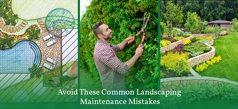 Avoid These Common Landscaping Maintenance Mistakes