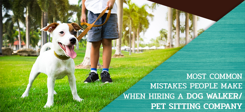 Most Common Mistakes People Make when hiring a Dog Walker/Pet Sitting Company