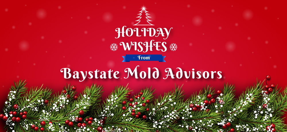 Season's Greetings from Baystate Mold Advisors