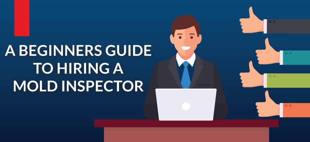 A Beginners Guide To Hiring A Mold Inspector