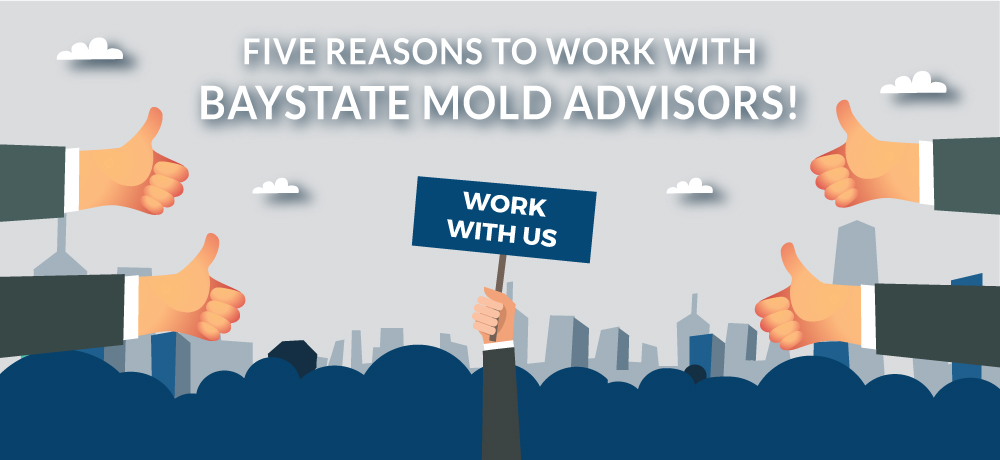 Why You Should Choose Baystate Mold Advisors!