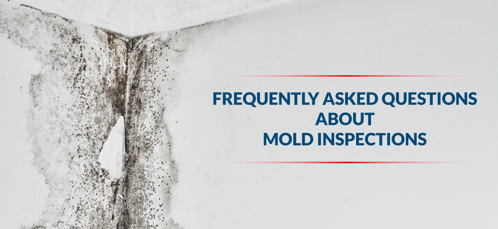 Frequently Asked Questions About Mold Inspections