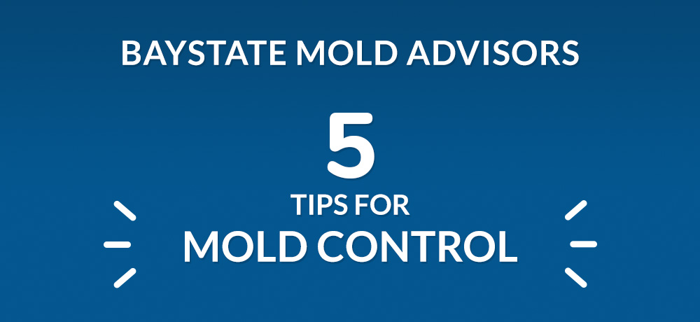 Five Tips For Mold Control