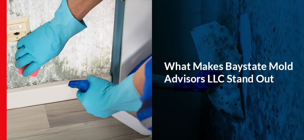 What Makes Baystate Mold Advisors LLC Stand Out