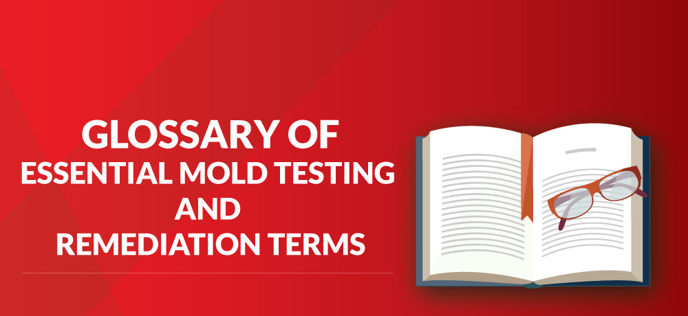 A Glossary Of Essential Mold Testing And Remediation Terms