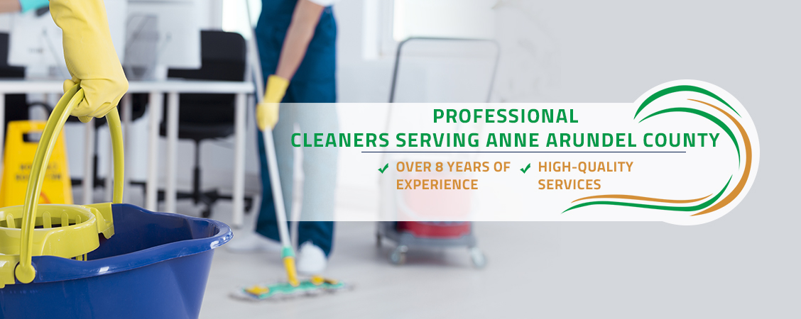 Professional Cleaners Serving Anne Arundel County