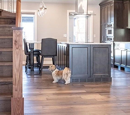 Dustless Hardwood Floor Refinishing Calgary
