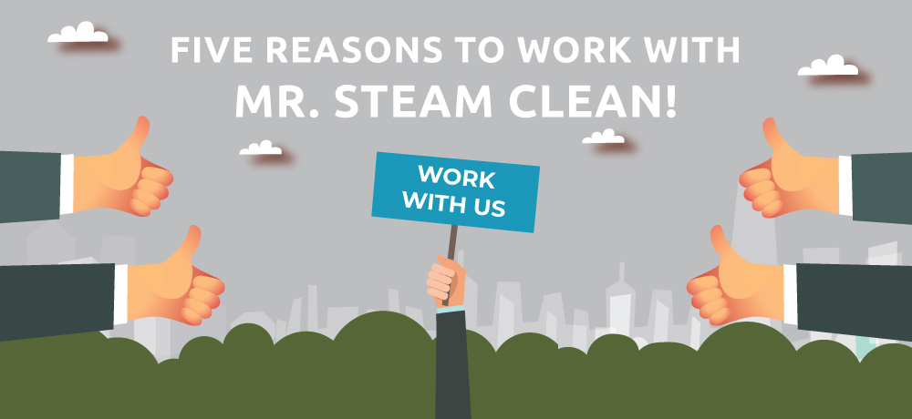 Why You Should Choose Mr Steam Clean