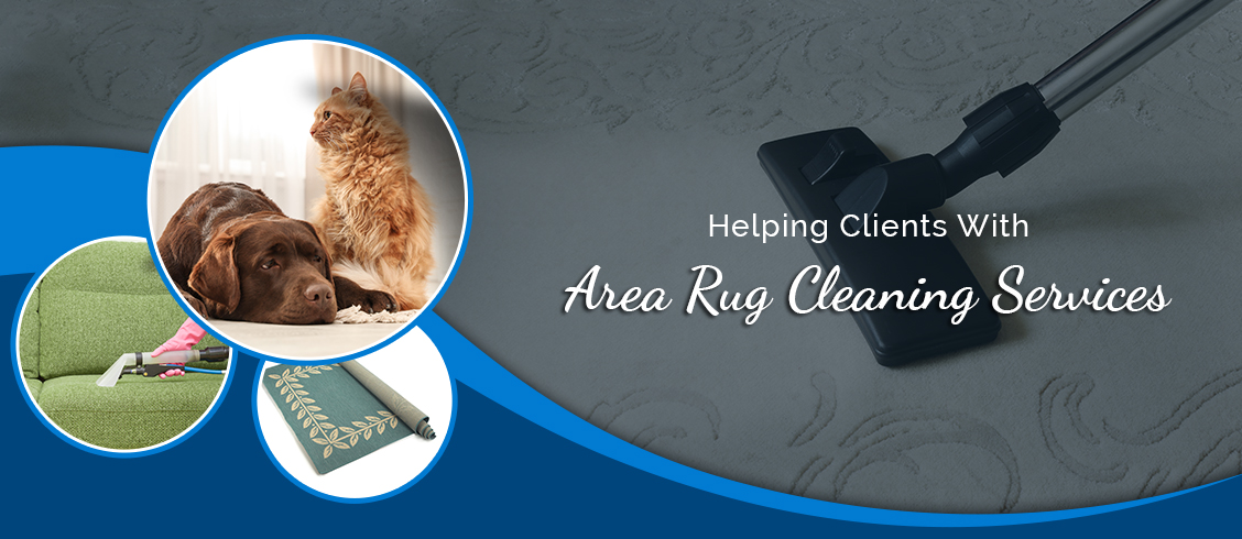 Helping Clients with  Area Rug Cleaning Services Cambridge