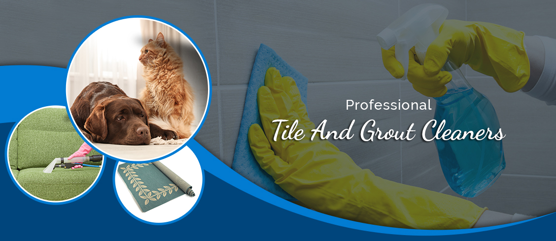 Professional Tile And Grout Cleaners Cambridge