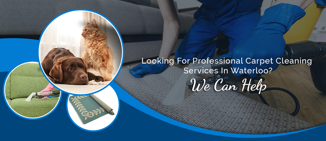 Commercial Carpet Cleaning Services by Carpet Masters - Professional Carpet Cleaner Waterloo