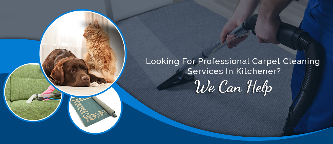 Residential & Commercial Carpet Cleaning Services in Guelph
