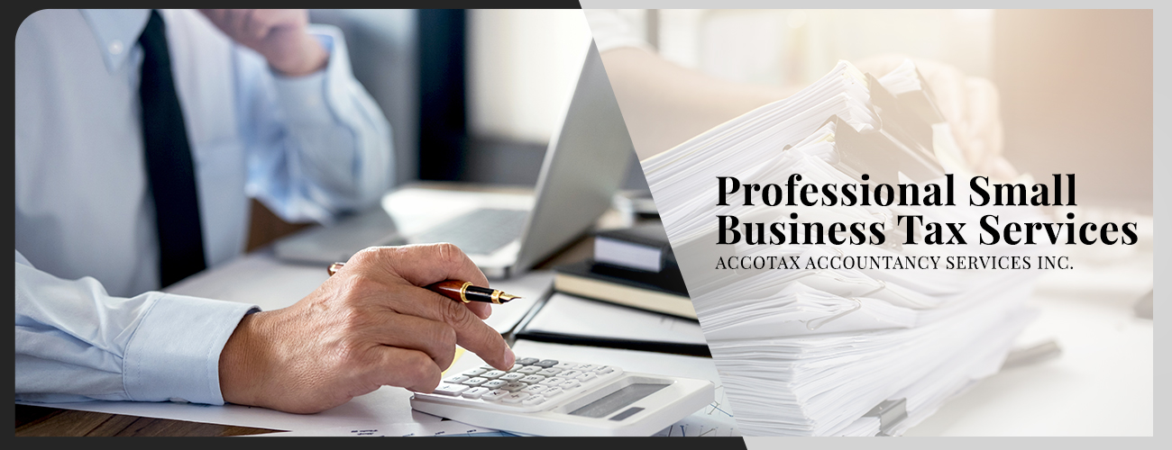 Professional Small Business Tax Services