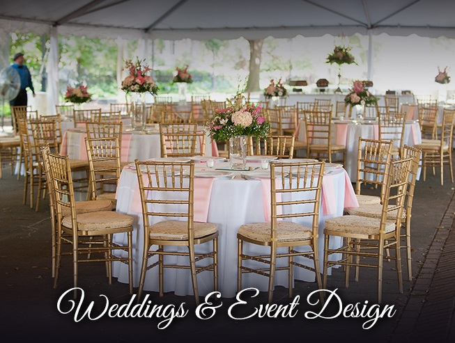Weddings & Event Design in columbia