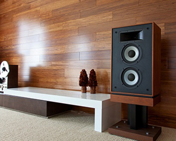 Whole Home Audio Systems