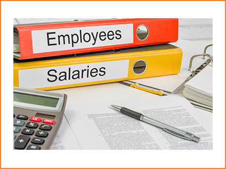 PROFESSIONAL PAYROLL SERVICES